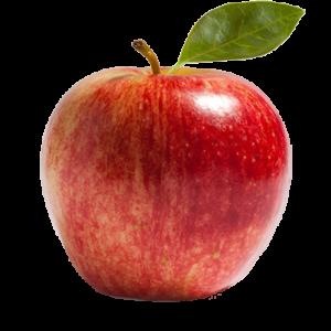 apple CLEAR BKGD SM